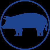 Gyvulių apskaitos sistemos